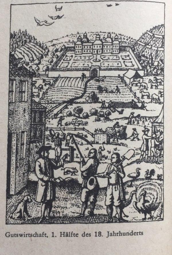 Gutswirtschaft 1. Hälfte des 18. Jahrhunderts