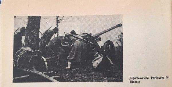 Jugoslawische Partisanen